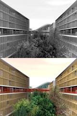 Liu Zhou Campus Masterplan